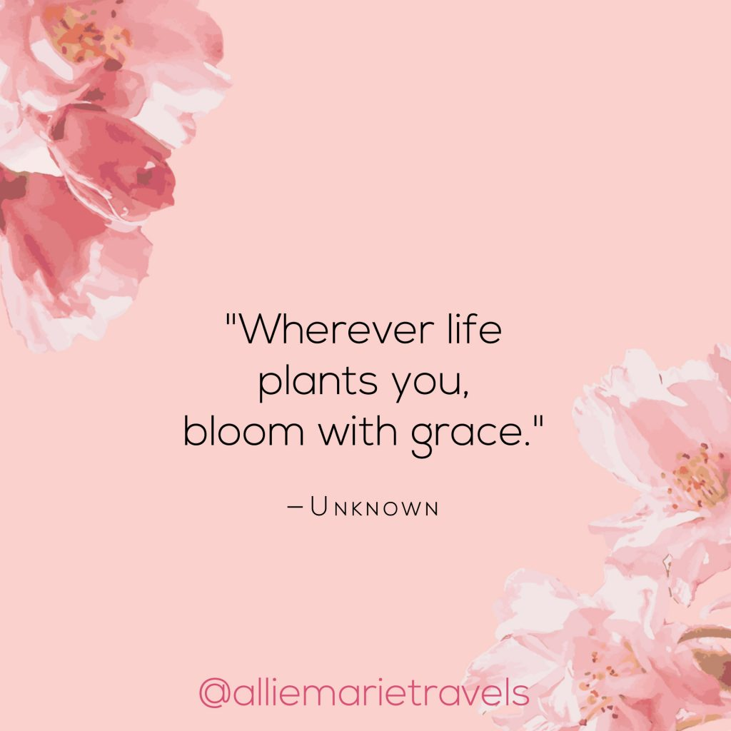 inspirational quotes Archives | Allie Marie Travels